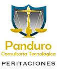 Panduro Consultoría Tecnológica